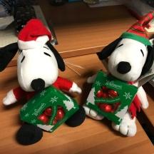 Snoopy presents